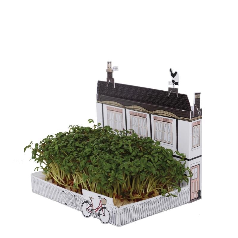 Maison avec jardin de cresson à faire pousser