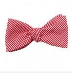 Noeud-papillon-rayures-rouges-L-Atelier-a-Nouer-La-Fiancee-du-Panda-blog-Mariage-et-Lifestyle