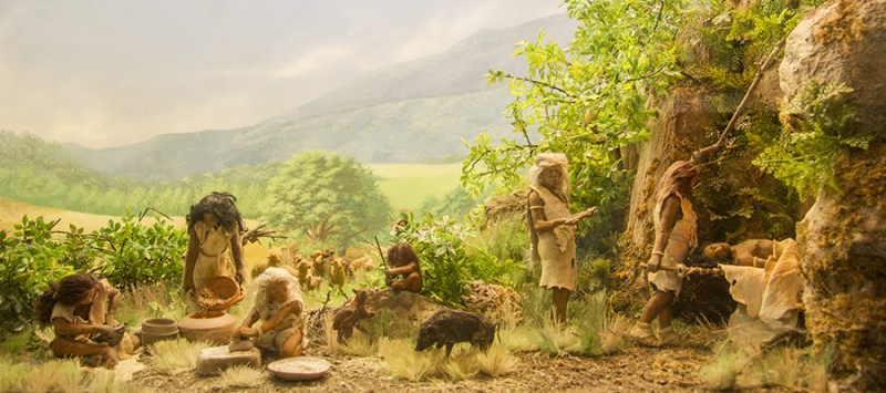 ambiente preistoria