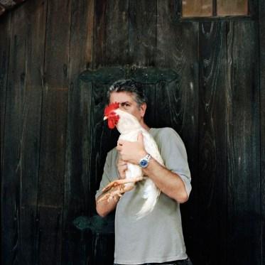 Bourdain & rooster