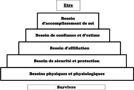 Pyramide de maslow, besoins fondamentaux, besoin humain
