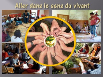 synergie humaine permaculture humaine