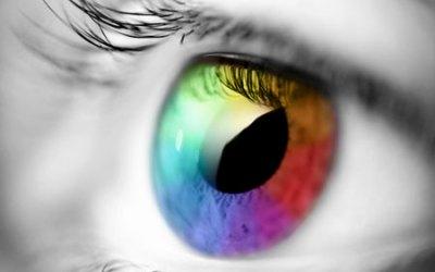 ¿Cómo vemos los colores?