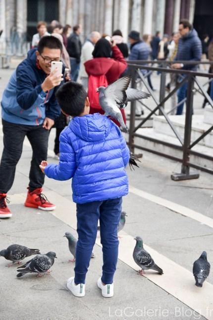 touristes prenant des pigeons en photo a venise