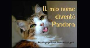 Il mio nome diventò Pandora