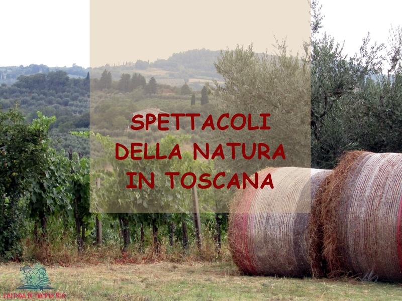 natura in Toscana su L'Agenda di mamma Bea