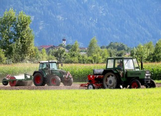 Eine ertragreiche Ernte im Ackerbau - Gepflegte Kulturpflanzen mit dem Lagerhaus, Foto: Knut Kuckel