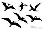 翼竜のシルエット