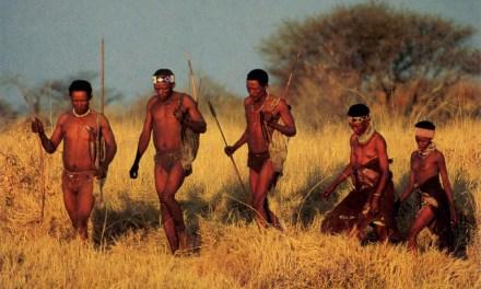 Khoisan chasseurs-cueilleurs : la civilisation la plus réussie, stable et écologique de l'histoire