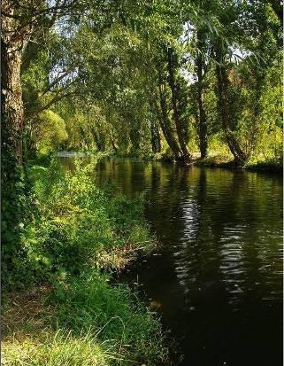 rio eresma