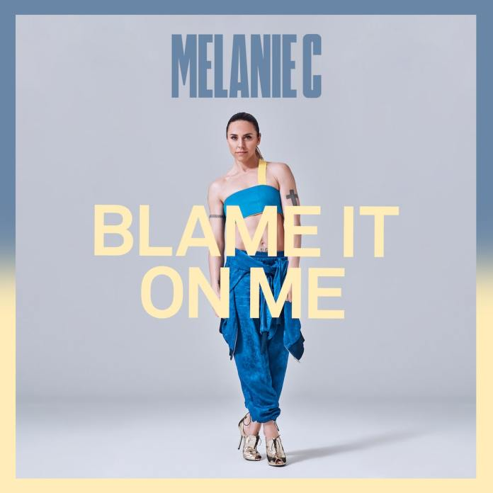 Blame it on me Cover