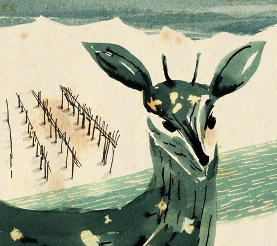 La Guarimba International Film Festival, El tornillo de Klaus, Winter Love (Amore d'Inverno), Isabel Herguera, Italy, spain, La Guarimba International Film Festival Selection 2017, short film festival,