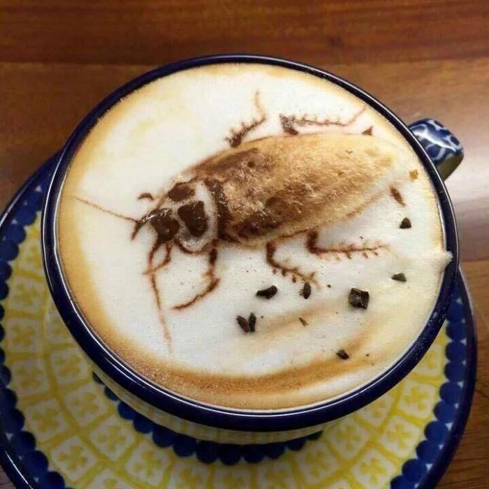 Malas ideas bien ejecutadas café cucaracha