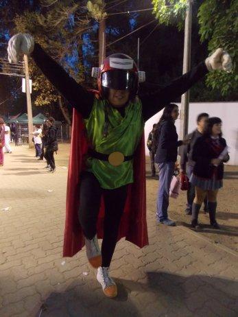 FAN_VIÑA_2015_DOMINGO (239)