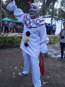 FAN_VIÑA_2015_SABADO (106)