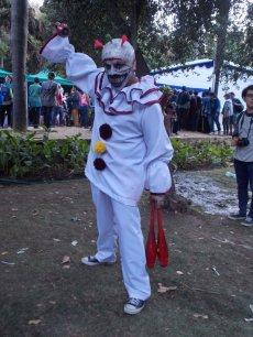 FAN_VIÑA_2015_SABADO (107)
