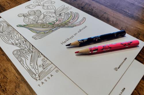 Aikuisten värityskirjan värittäminen on rentouttavaa