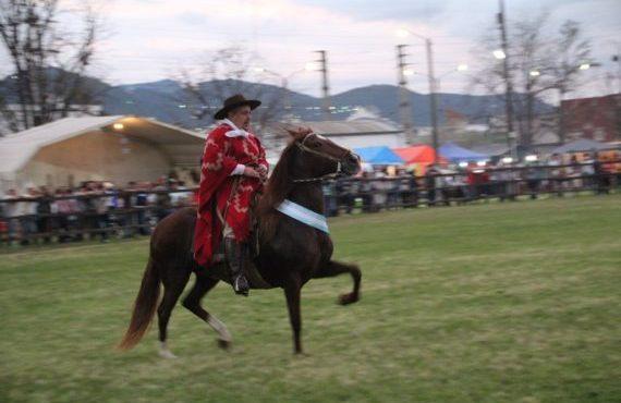 Llega el 38° Concurso Nacional de Caballos Peruanos de Paso