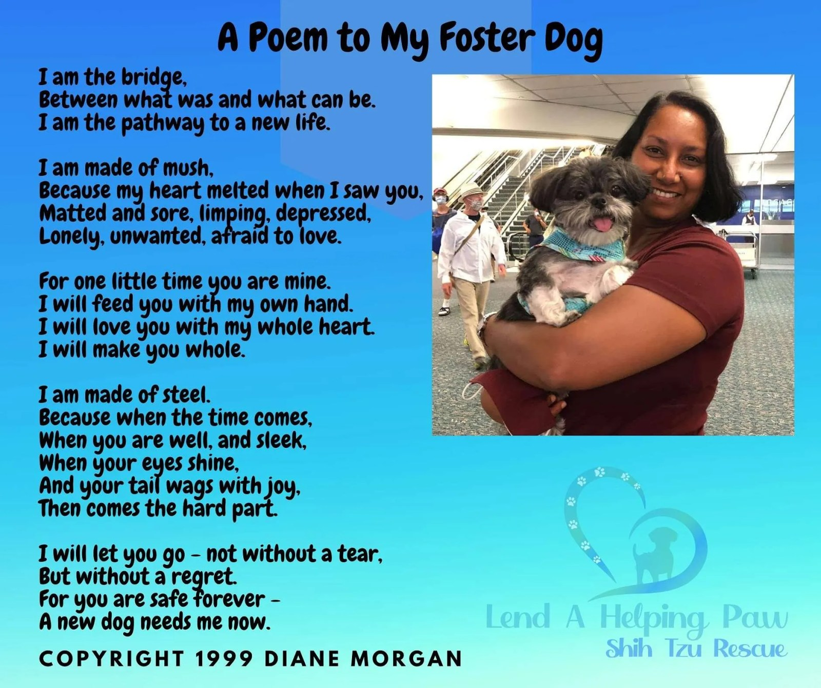 a foster dog poem