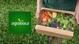 AGROBOCA – ¿Que hacer con los excedentes de nuestro huerto?