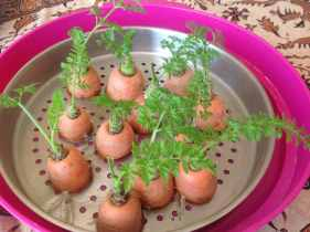 10 Plantas de la Huerta que rebrotan sin Semilla