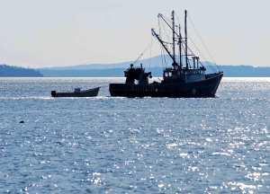 trawler-1057583-web