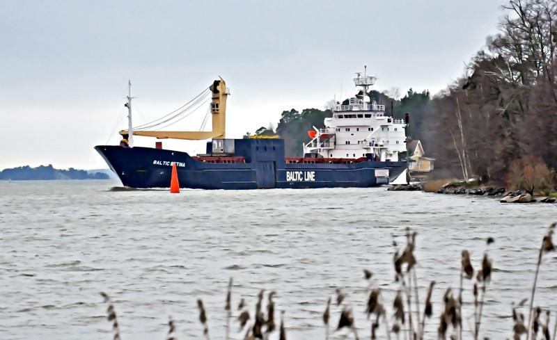 Baltic Betina