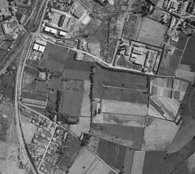 encagnane-1950