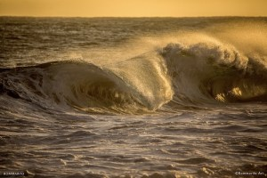 Stay healthy and swim in the San Diego waves