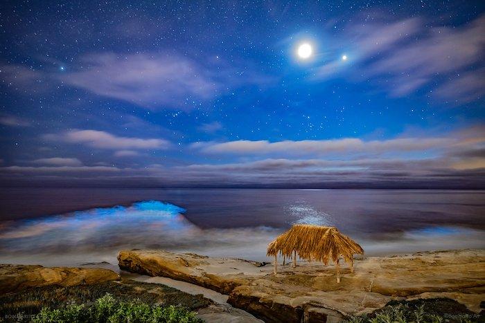A bioluminescent beach in San Diego, La Jolla