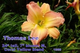 Thomas Lee