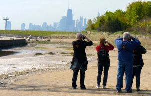 Birders searching for waterfowl at Montrose Point Bird Sanctuary