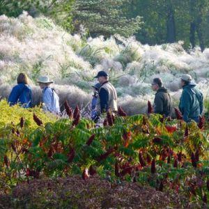 Chicago Botanic Garden @ Chicago Botanic Garden   Glencoe   Illinois   United States