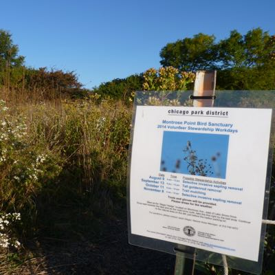 Lake Cook Audubon Field Trip to Montrose Point Bird Sanctuary