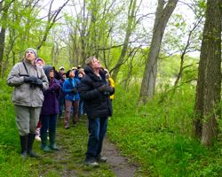 Warbler Alley at Ryerson Conservation Area