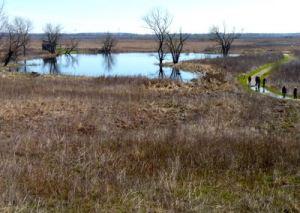 Goose Lake Prairie State Natural Area @ Goose Lake Prairie State Natural Area | Morris | Illinois | United States