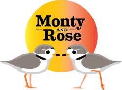 Monty & Rose - The Story of a Pair of Endangered Piping Plovers @ Wilmette Theater | Wilmette | Illinois | United States