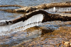 Unusual Ice Formation on Lake Glenville NC