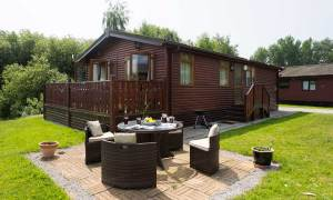 dog friendly holidays in the lake district