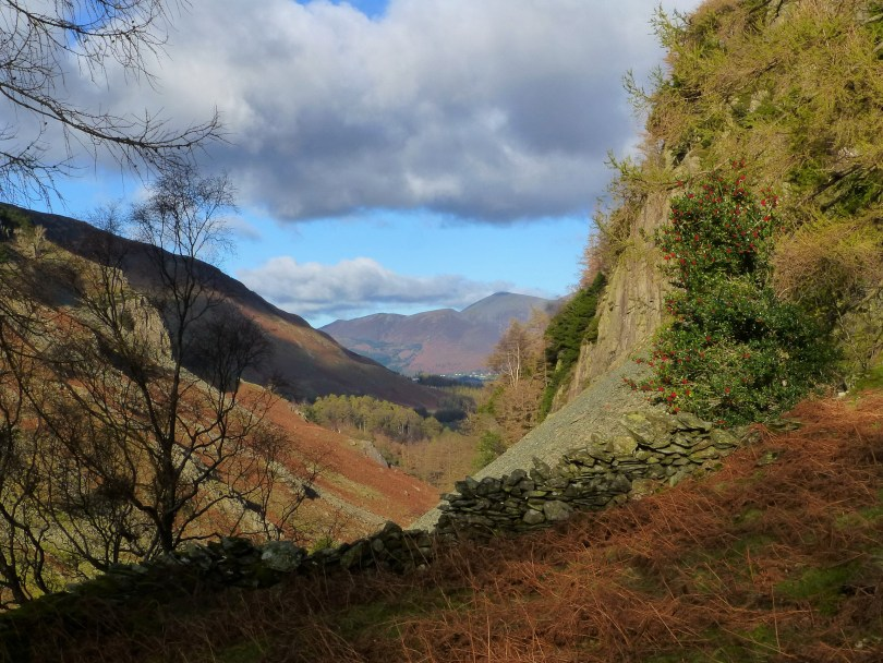 Castle Crag, Borrowdale