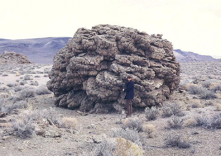 Radiometrische dating van sedimentaire rotsen is onbetrouwbaar, omdat