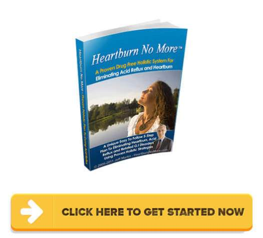 Download Heartburn No More PDF