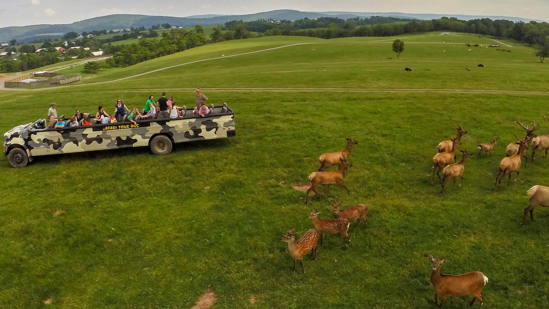 Safari Tours at Lake Tobias Wildlife Park