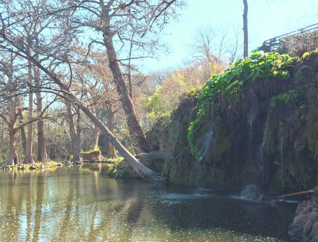Krause Springs in Spicewood, Texas