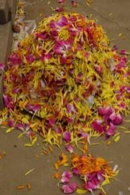 pinda puja offerings, Swami Lakshmanjoo Mahasamadhi Havan