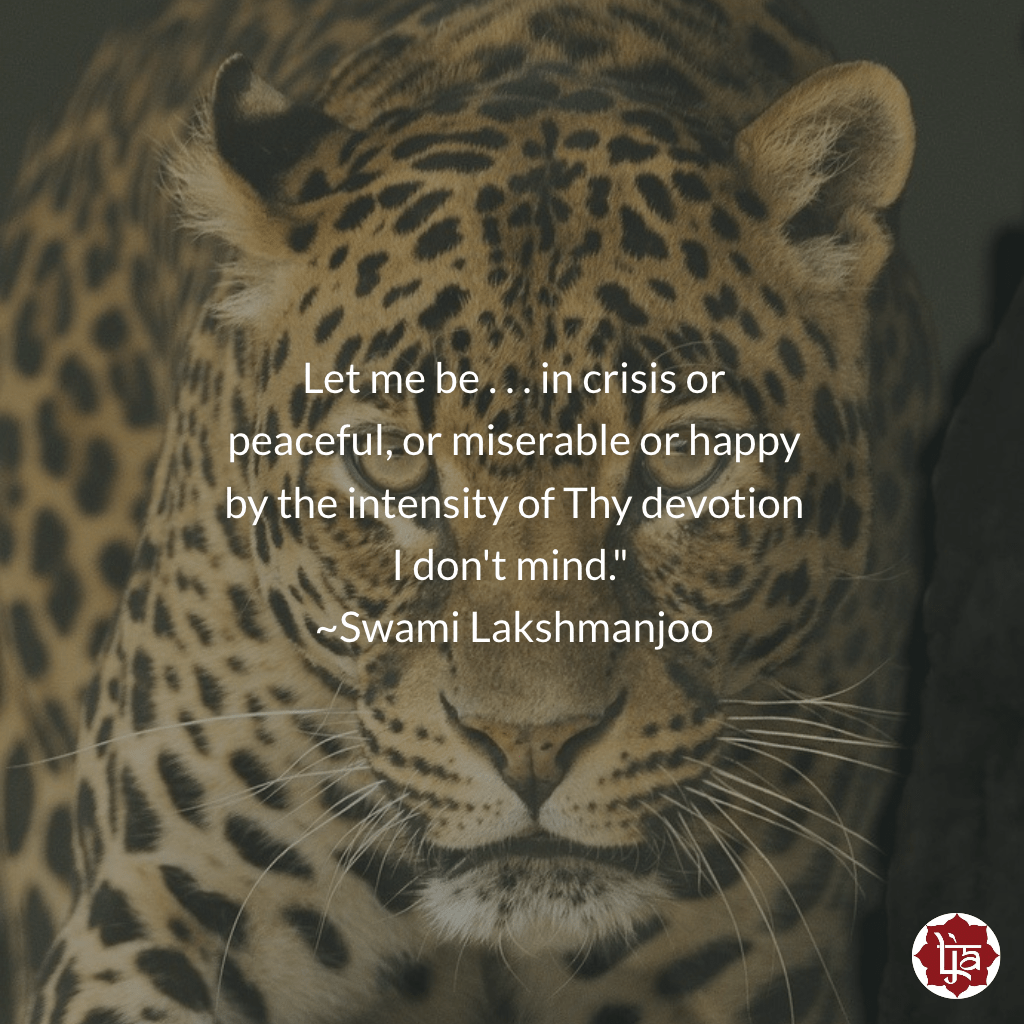 """Let me be . . . in crisis or peaceful, or miserable or happy . . . by the intensity of Thy devotion . . . I don't mind."" ~Swami Lakshmanjoo"