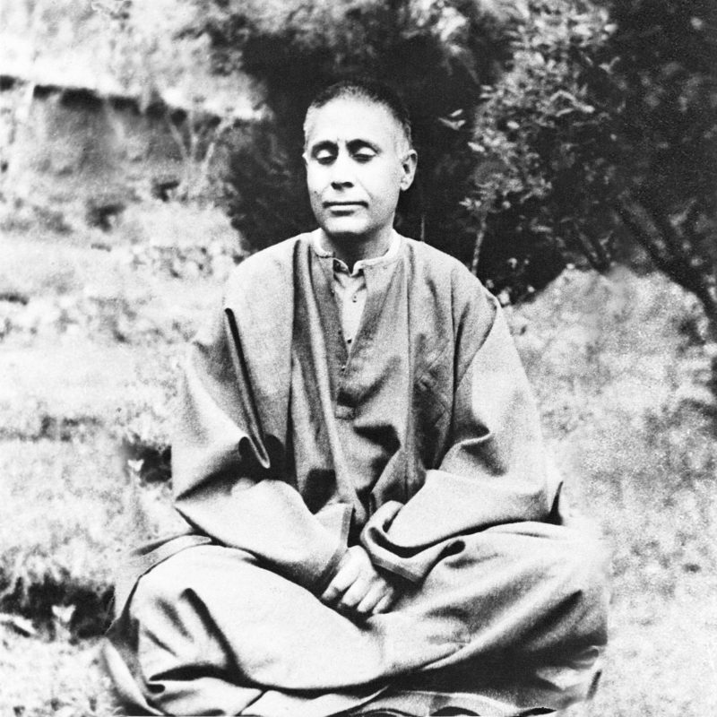 Mind is actually soul with various and differentiated thoughts. ~Swami Lakshmanjoo