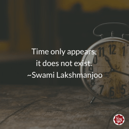 Time only appears, it does not exist. ~Swami Lakshmanjoo