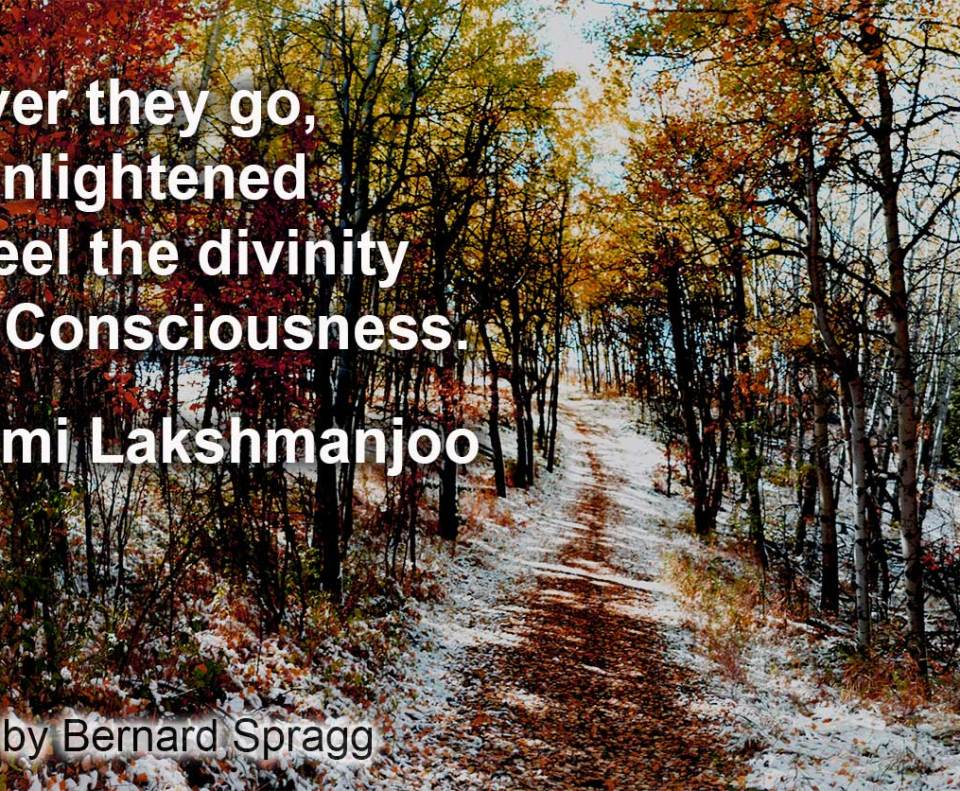 5 Subjective States in Kashmir Shaivism - part 3