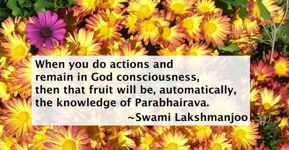 The Yoga of Knowledge & Action as explained in Kashmir Shaivism